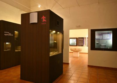 Museo 8