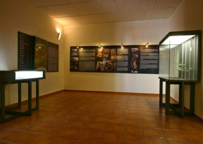 Museo 11