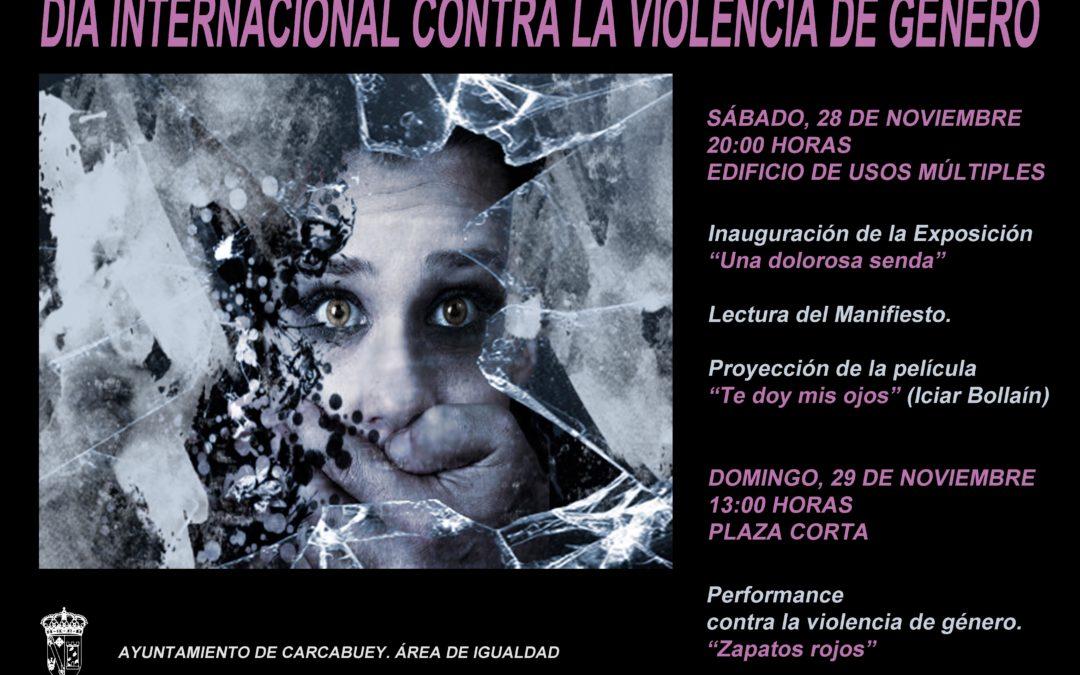 Acto conmemorativo día internacional contra la violencia de género 1