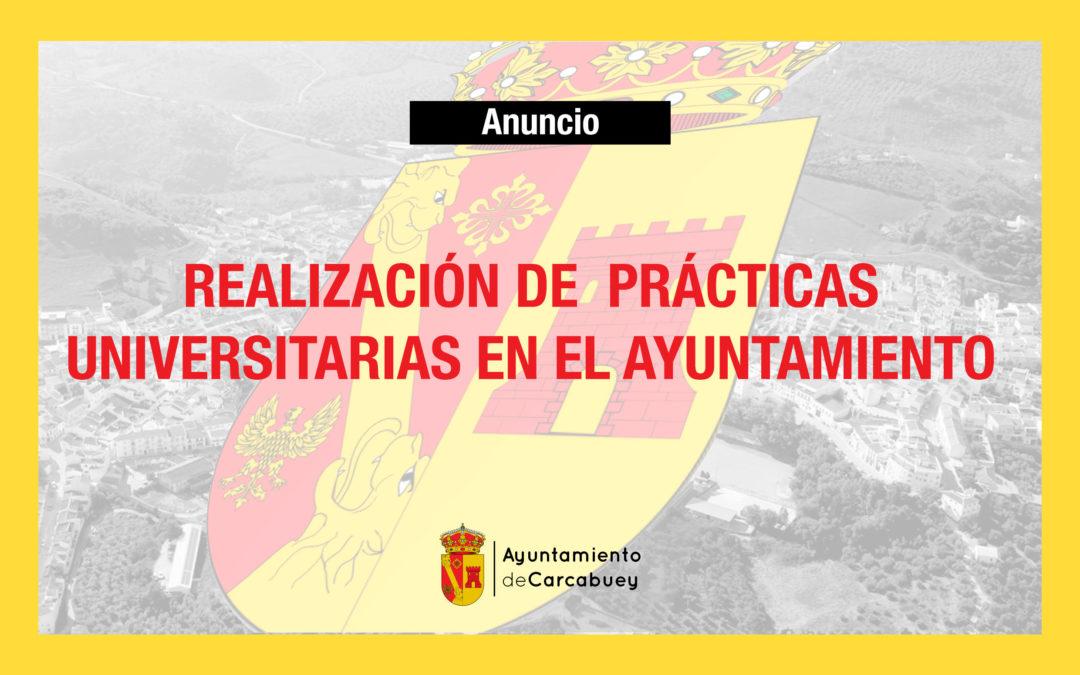 REALIZACIÓN DE PRÁCTICAS UNIVERSITARIAS EN EL AYUNTAMIENTO DE CARCABUEY 1