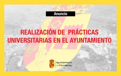 REALIZACIÓN DE PRÁCTICAS UNIVERSITARIAS EN EL AYUNTAMIENTO DE CARCABUEY